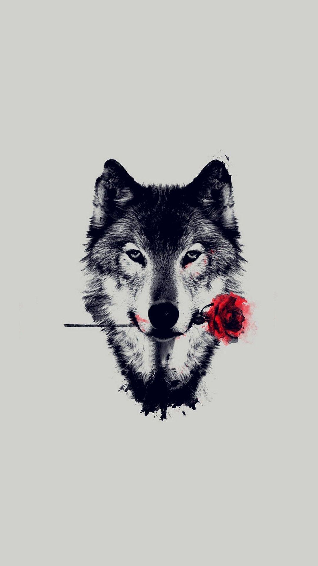 Haunted Wolf Wallpapers Wallpaper Cave