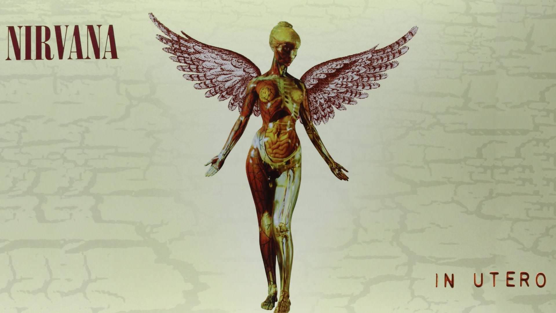 Nirvana In Utero Wallpapers Wallpaper Cave