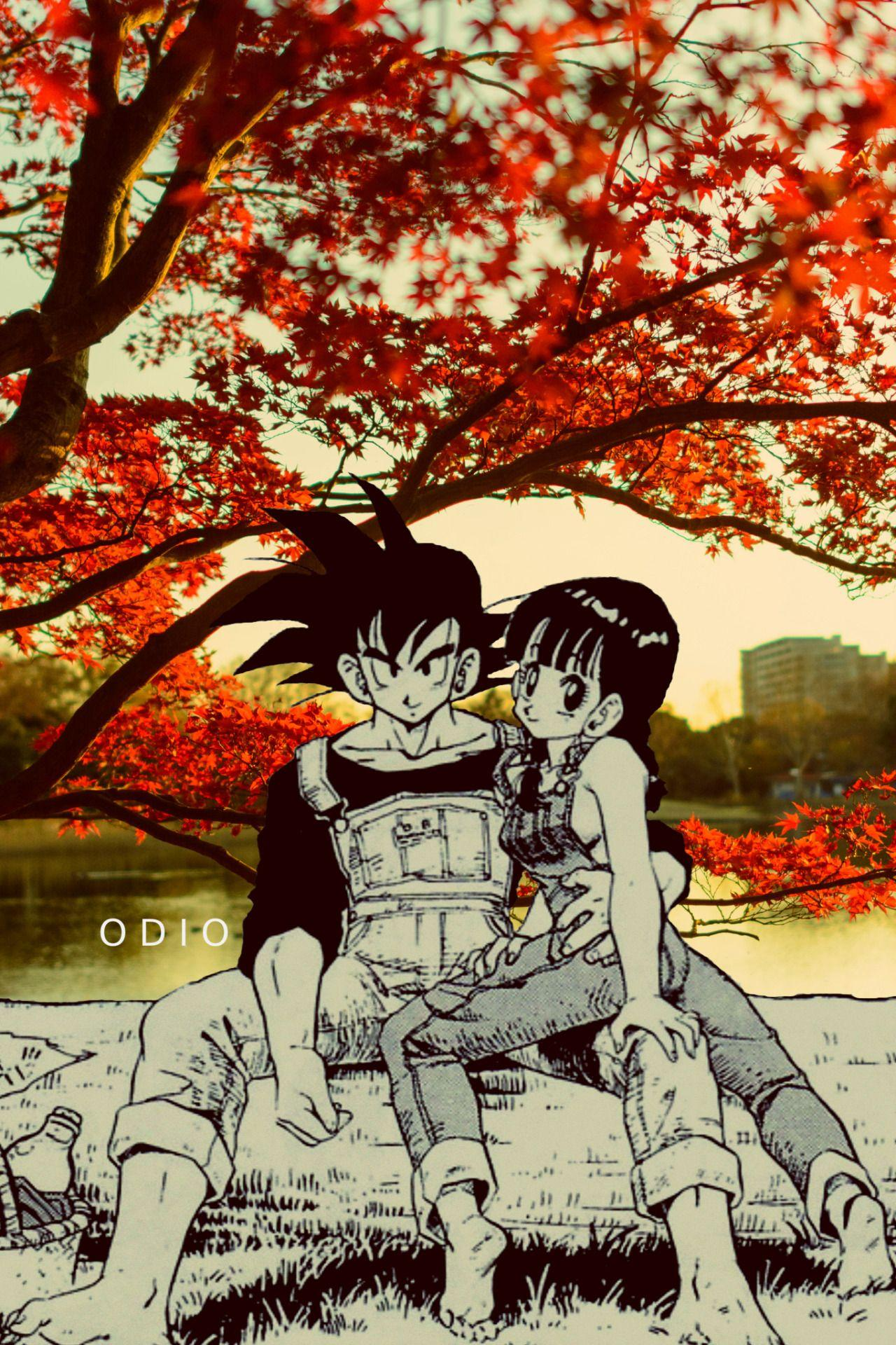 Dragon Ball Z Aesthetic Wallpapers Wallpaper Cave