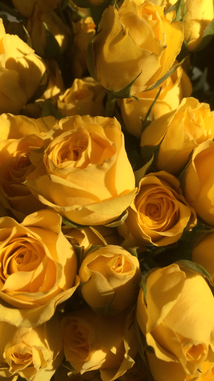 Yellow Aesthetic Flowers Wallpapers - Wallpaper Cave