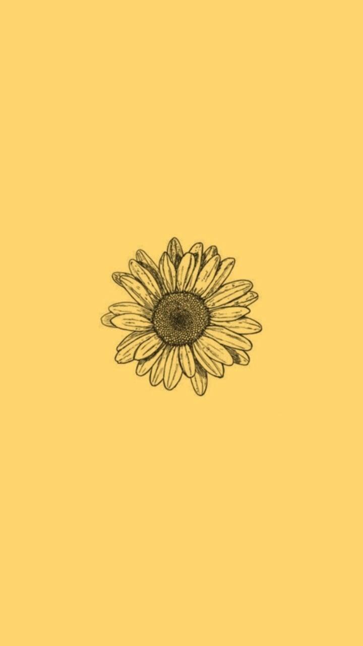 Laptop Backgrounds Aesthetic Flowers : Yellow Aesthetic ...