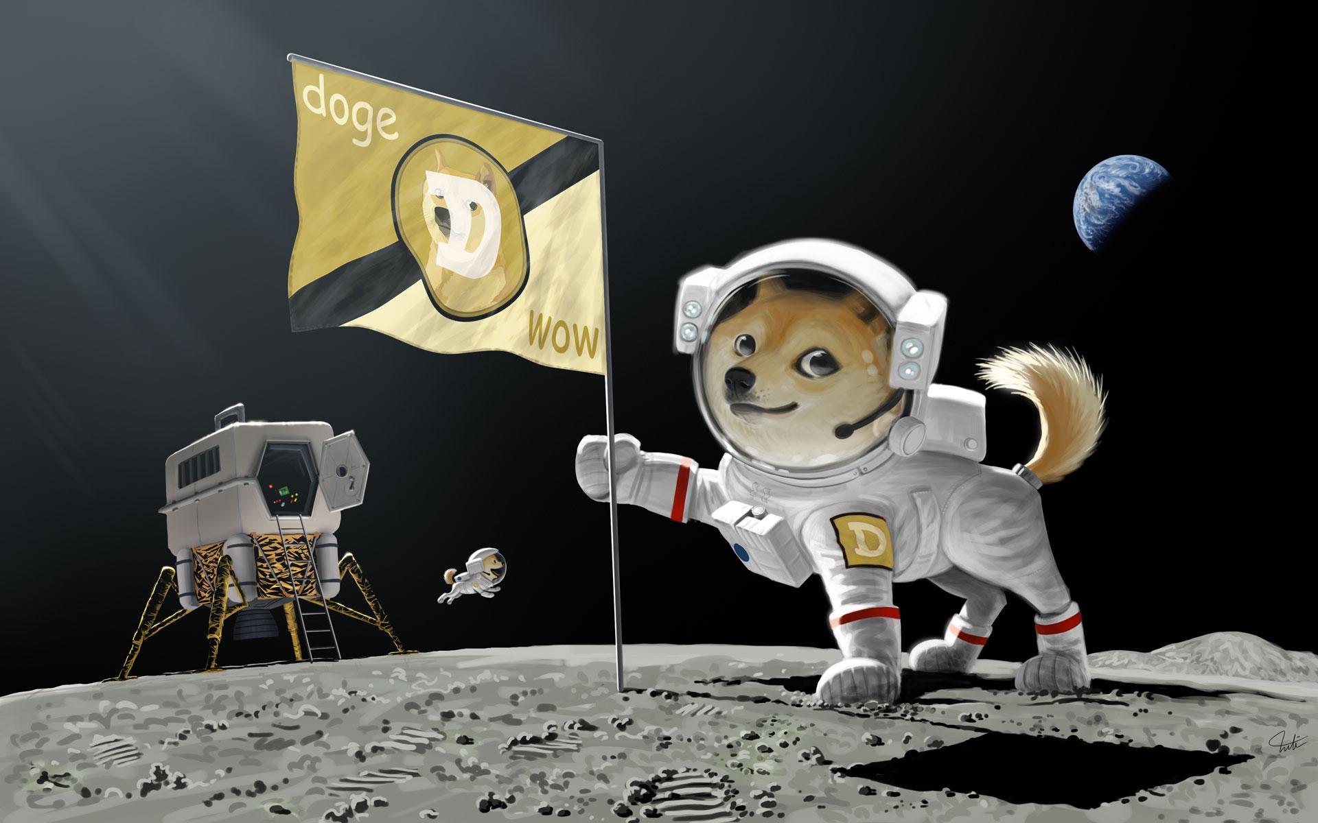 Image result for dogecoin wallpaper