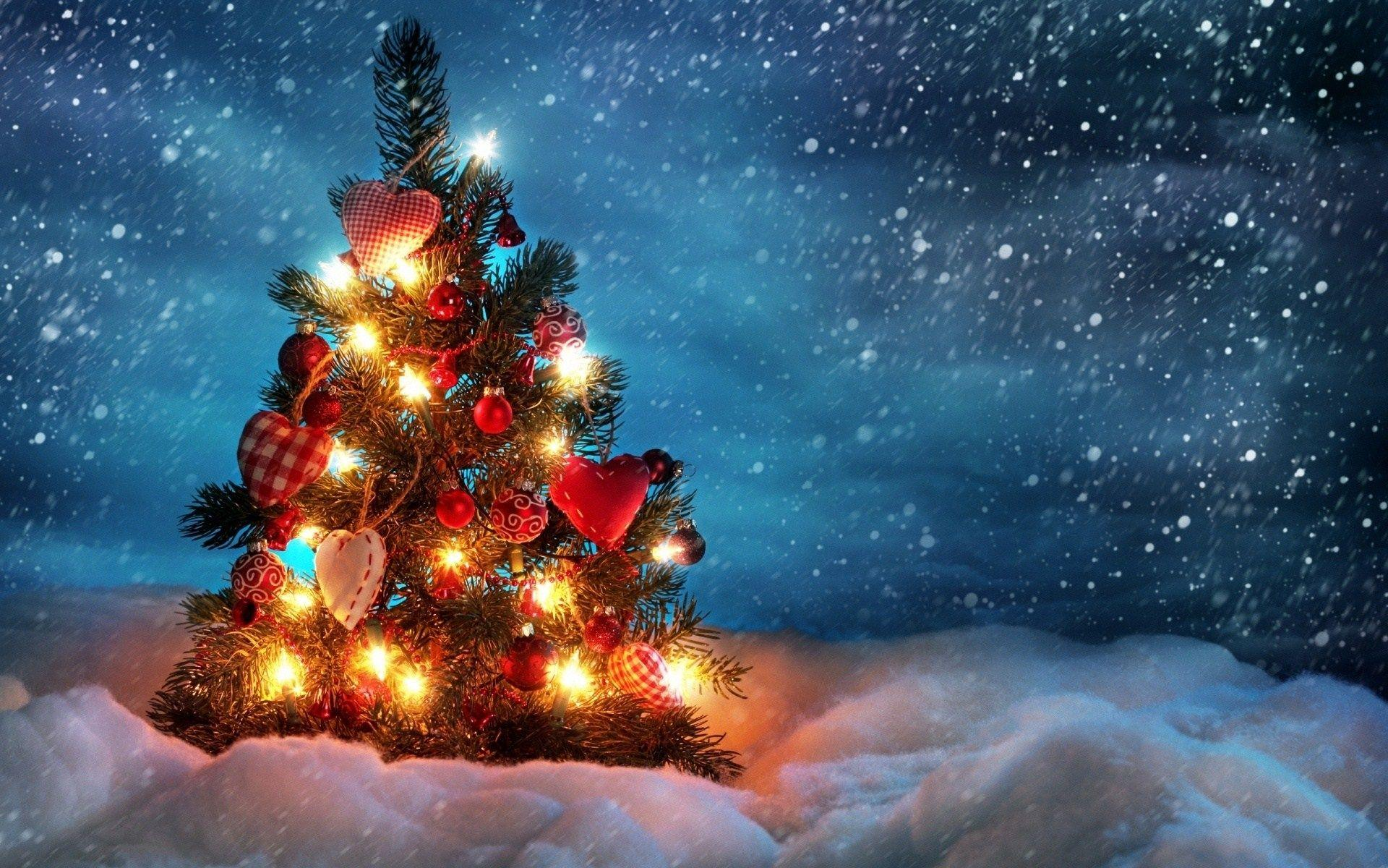 Christmas Trees Hd Wallpapers Wallpaper Cave