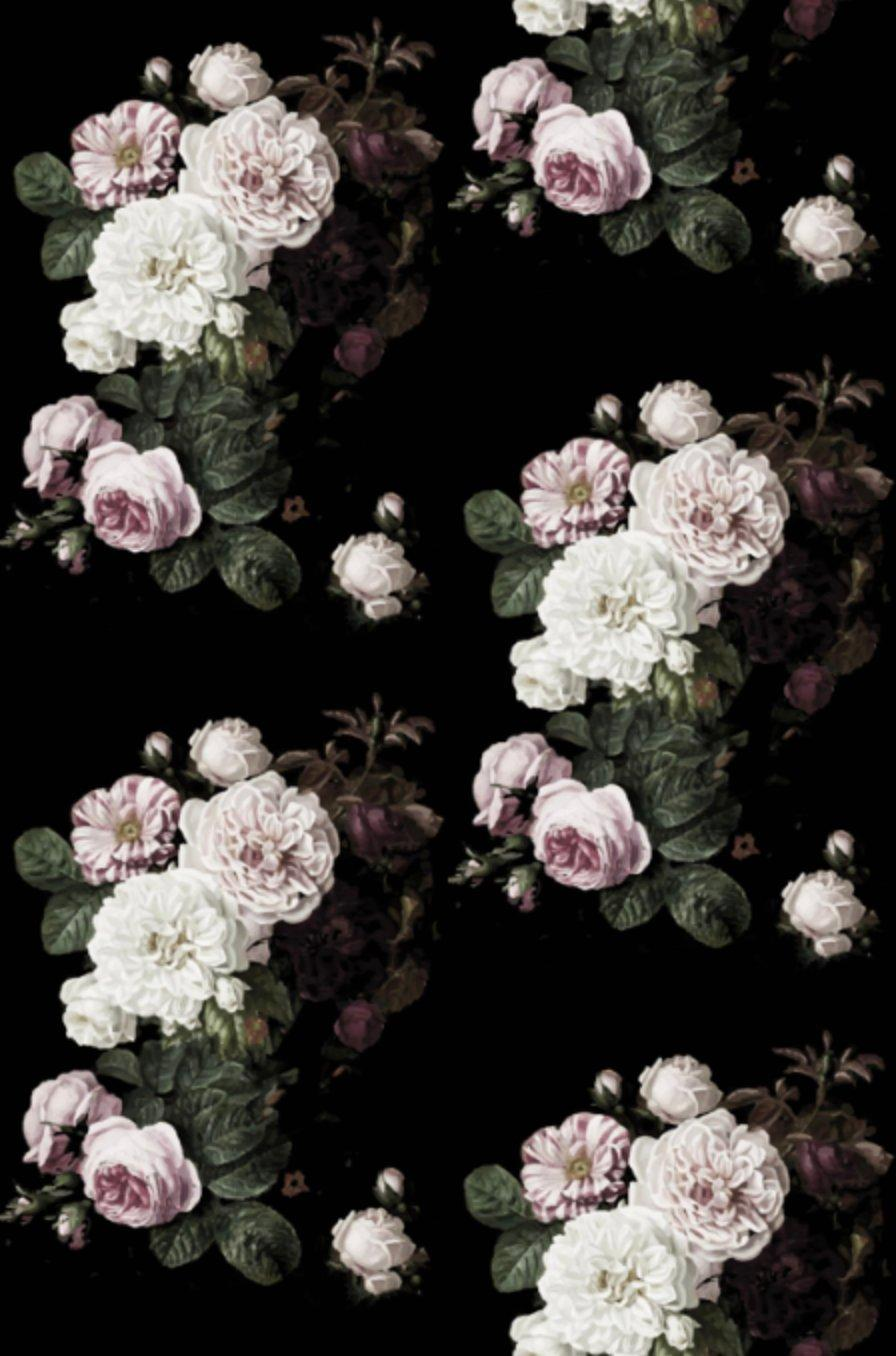 Vintage Rose Wallpapers Wallpaper Cave