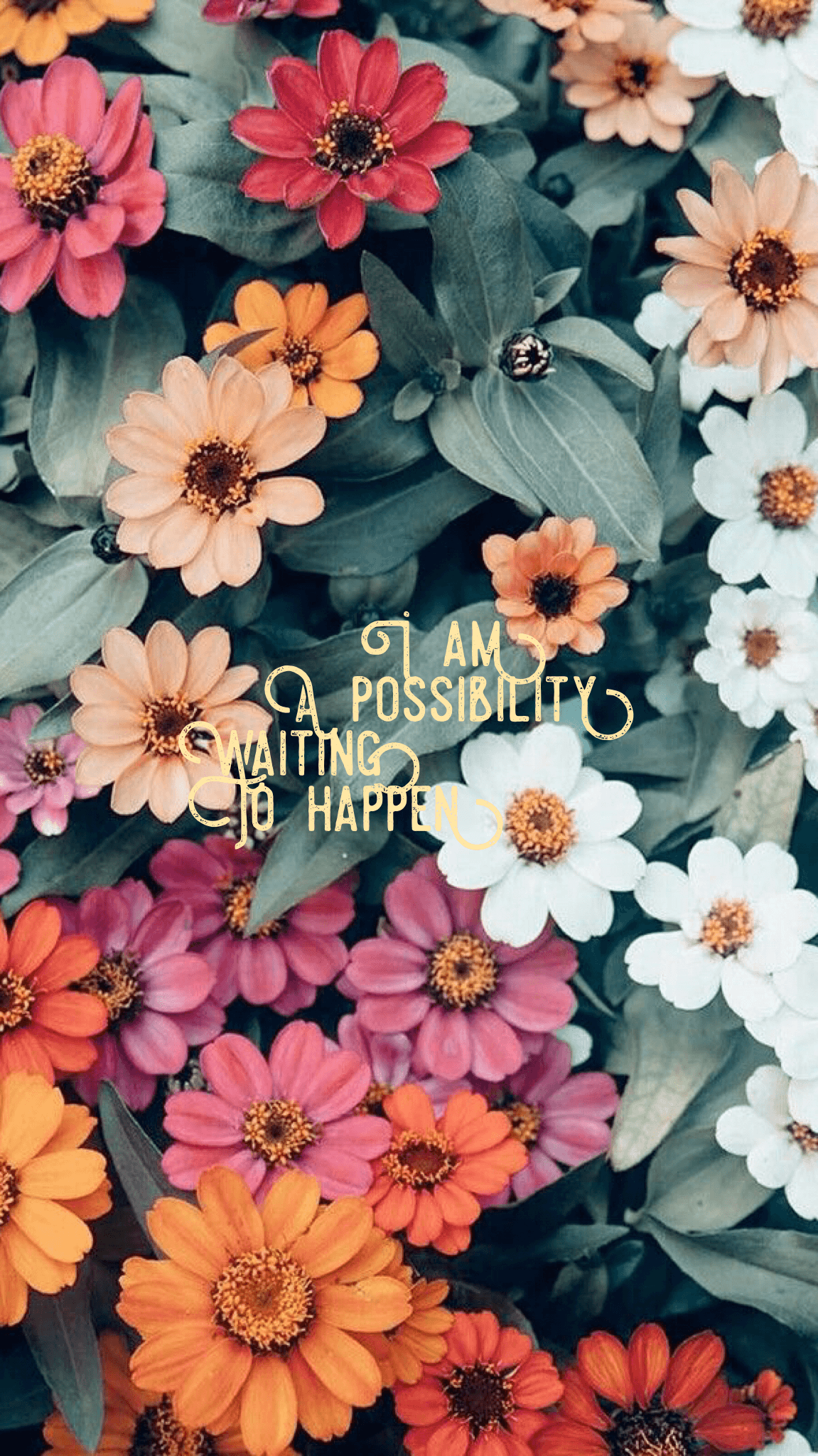 Quotes Flower Wallpapers Wallpaper Cave