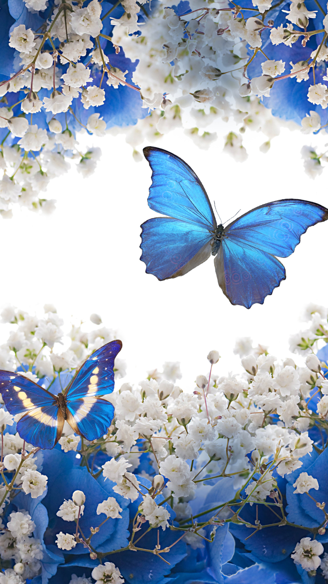 Butterfly Mobile Wallpapers Wallpaper Cave