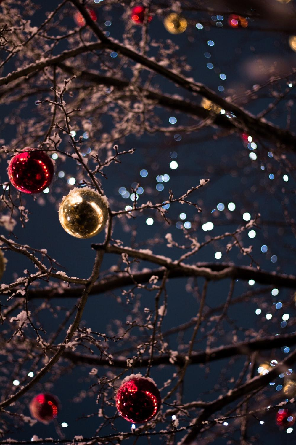 900+ Christmas Backgrounds Image: Download HD Backgrounds on Unsplash