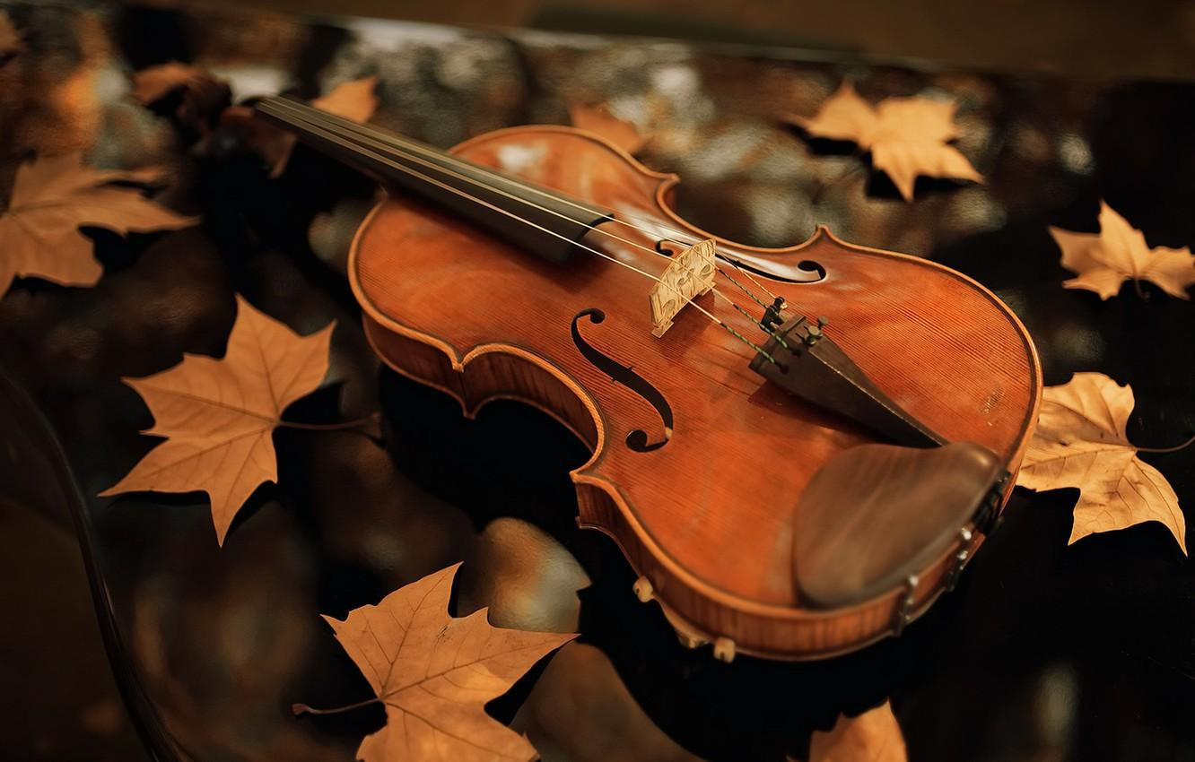 Violin Photography Wallpapers - Wallpaper Cave
