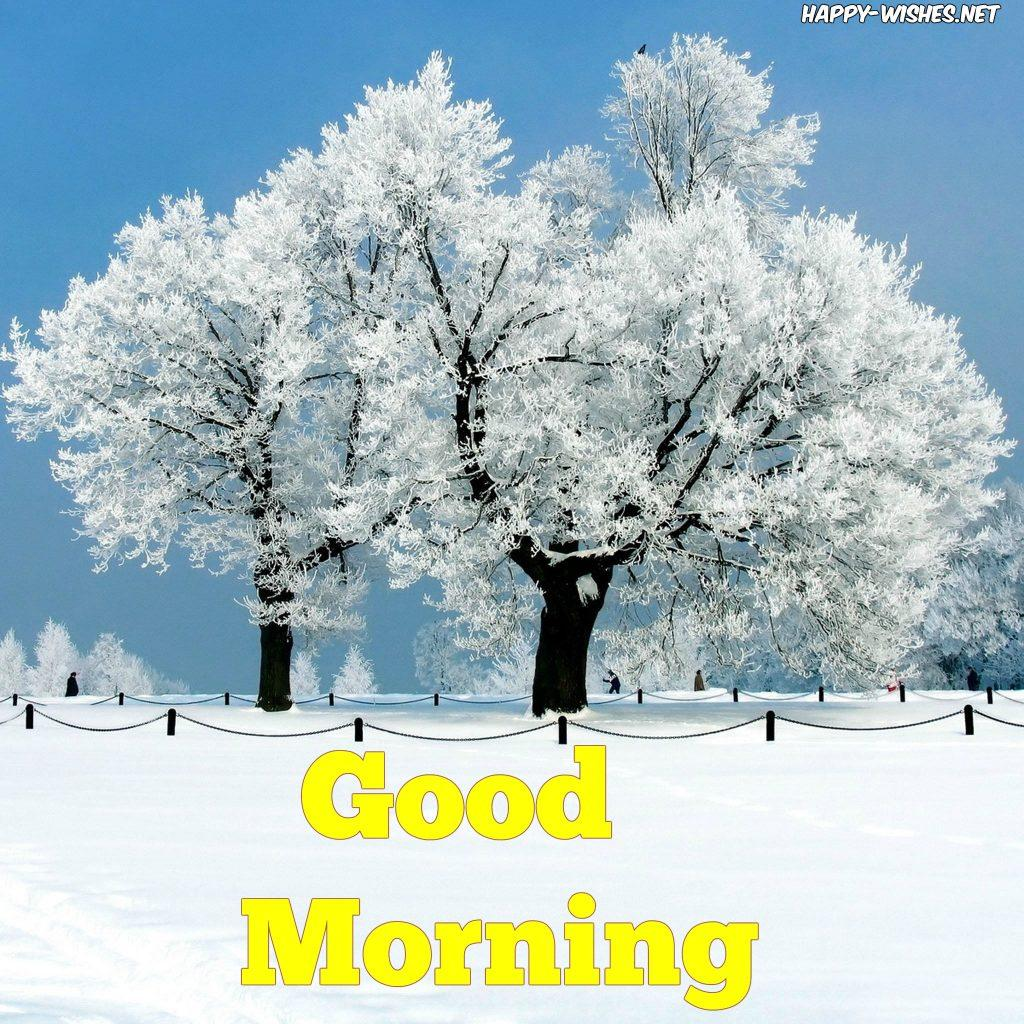 25 Winter Good Morning Wishes Quotes & Image