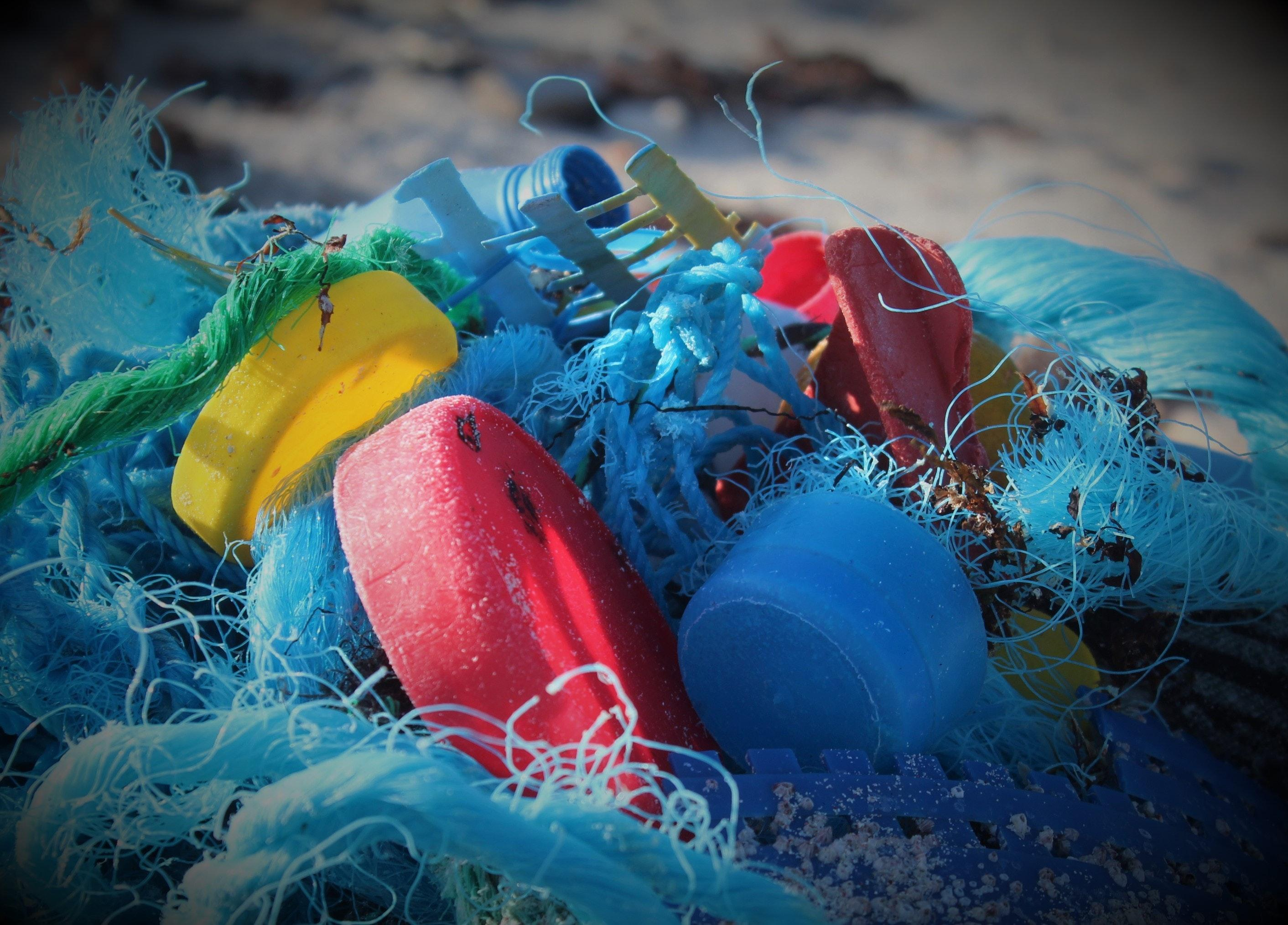 Free stock photo of plastics, pollution, pollution on the beach