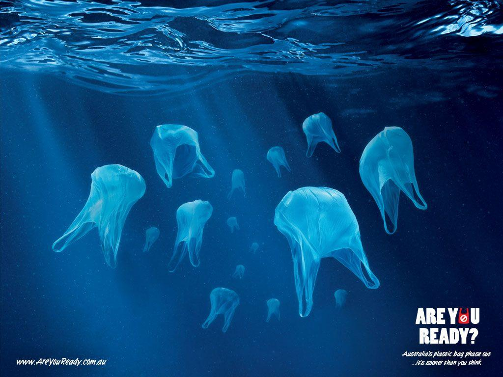 Image result for plastic bag pollution image