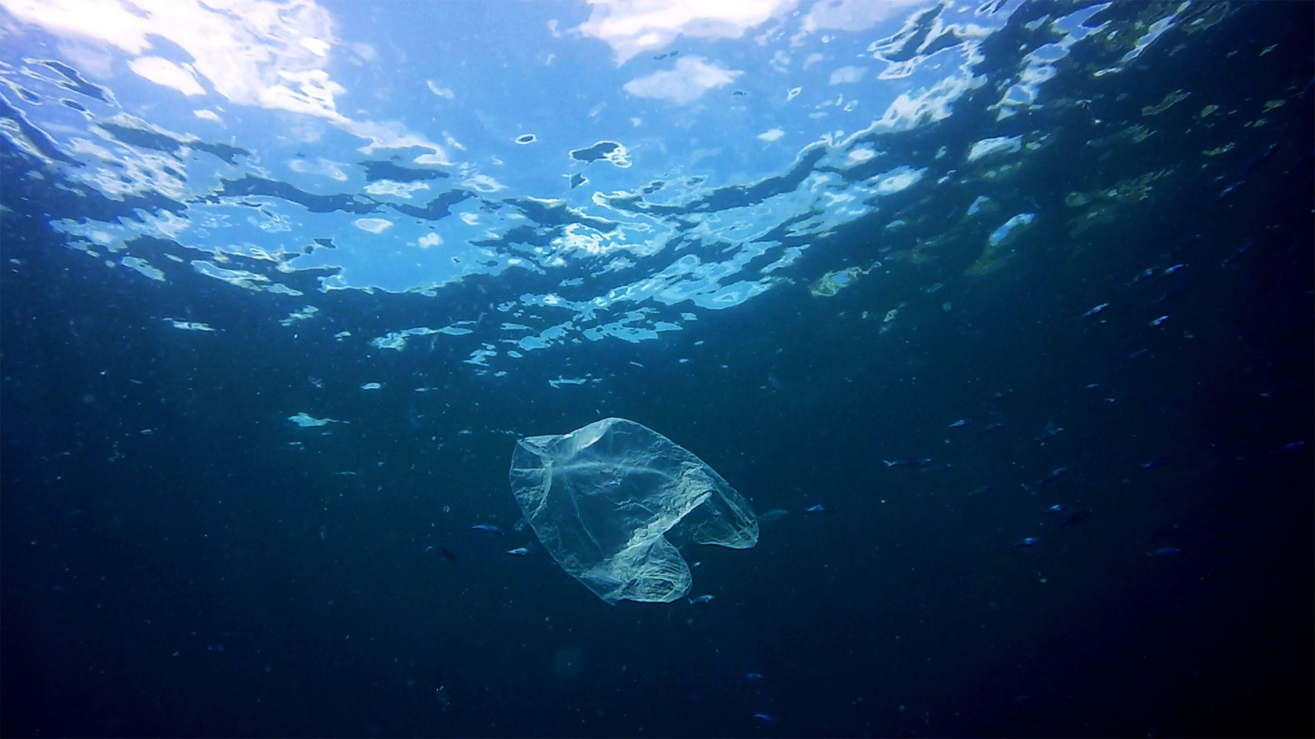 Turning the tide on plastic pollution