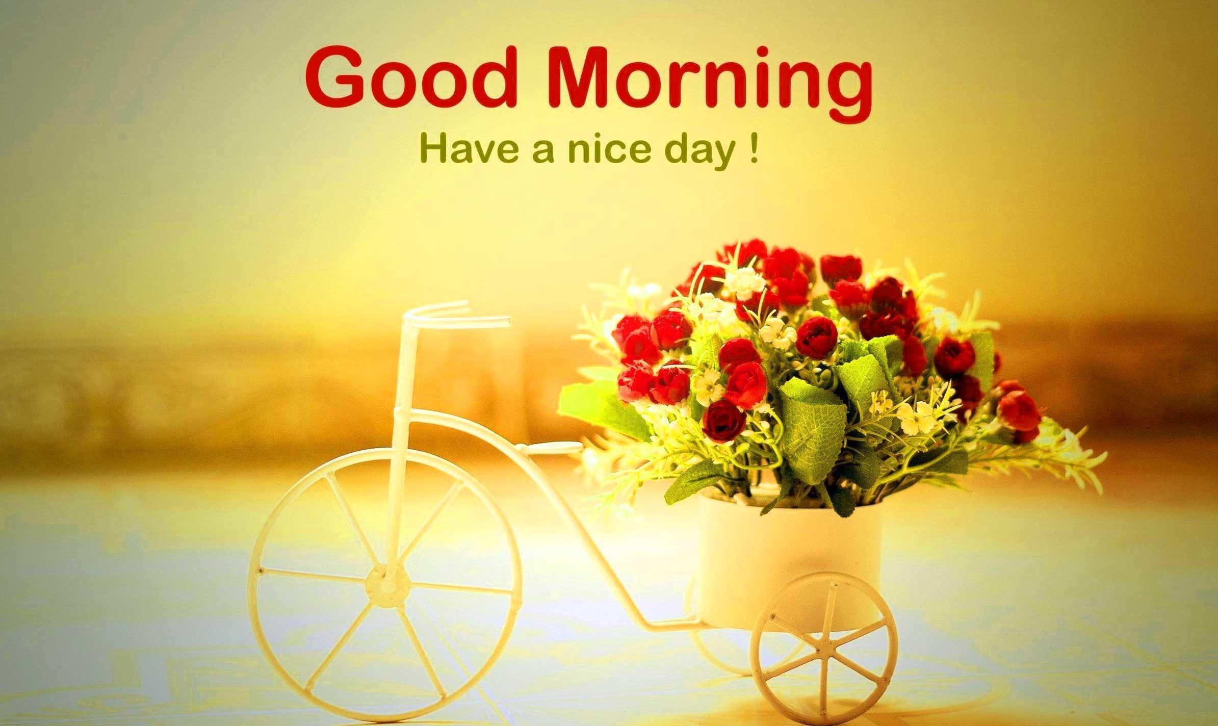 Its a beautiful day #sunflower #inspiration www