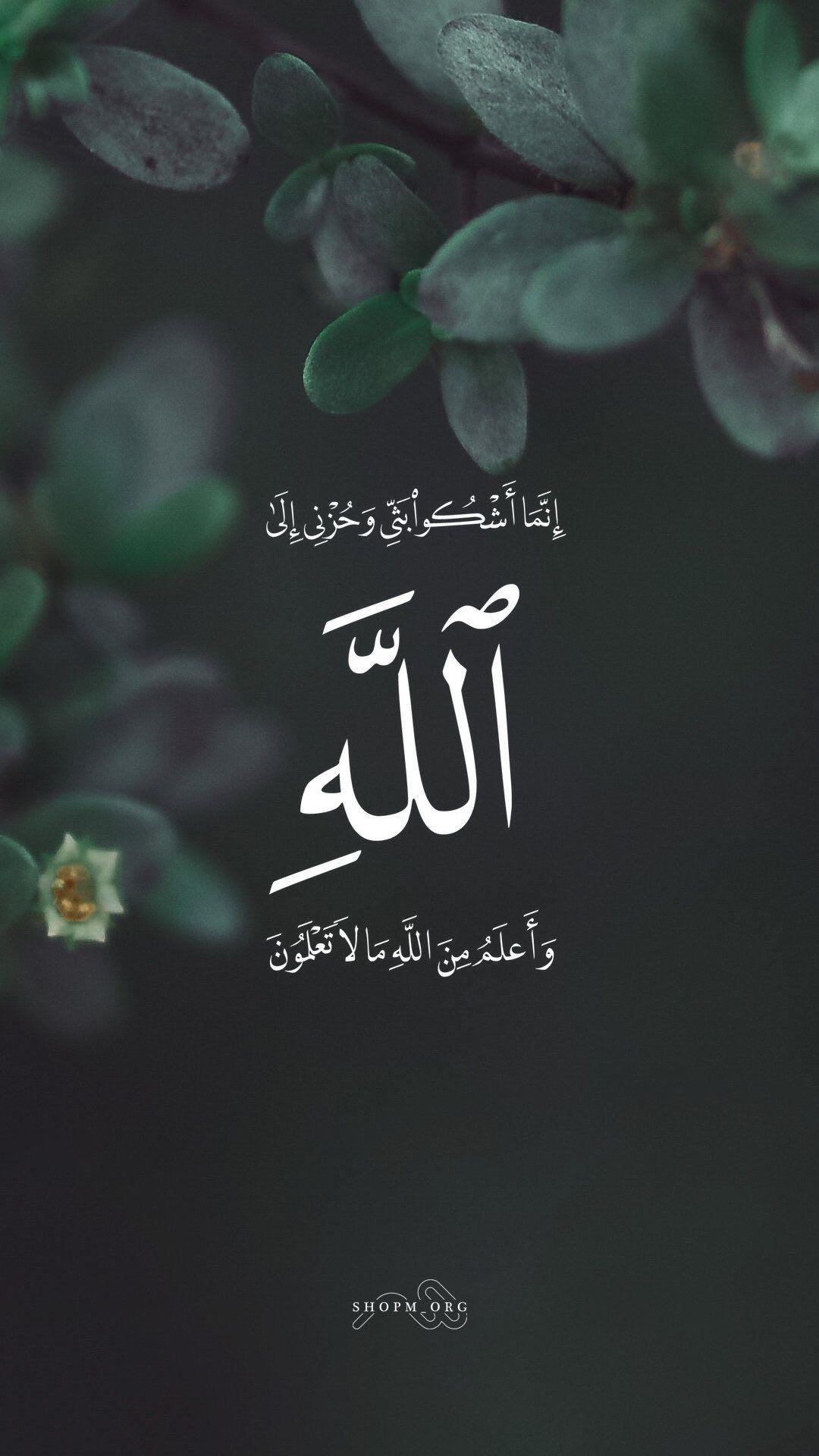 Surah Yusuf 12:86 ~~ He said, I only complain of my