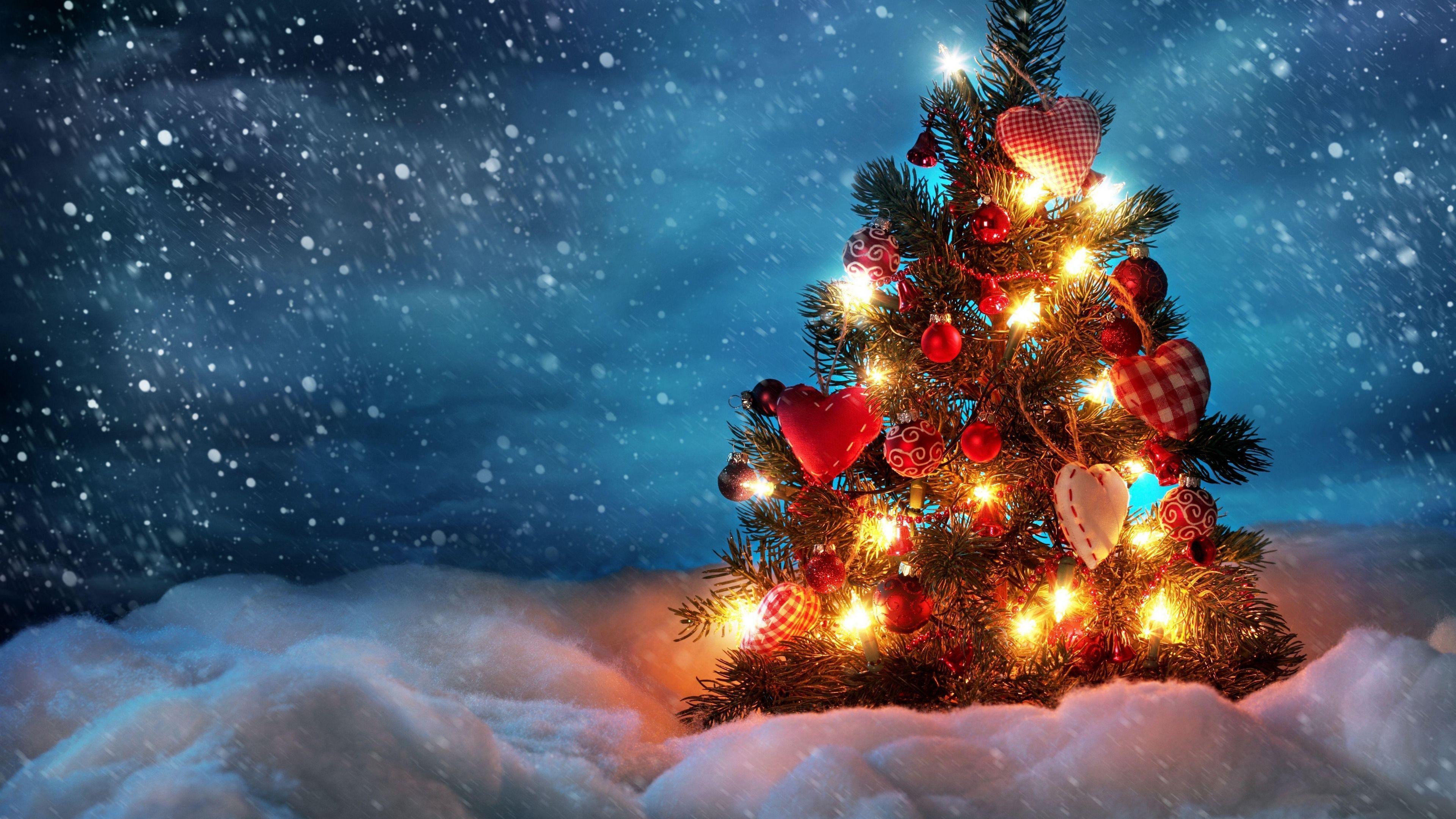 Christmas Tree Hd 4k Wallpapers - Wallpaper Cave