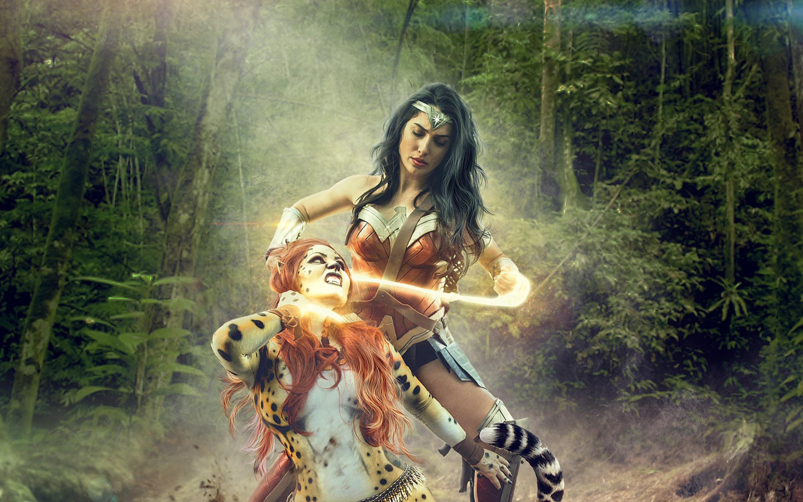 Wonder Woman Vs Cheetah Art Wallpapers - Wallpaper Cave