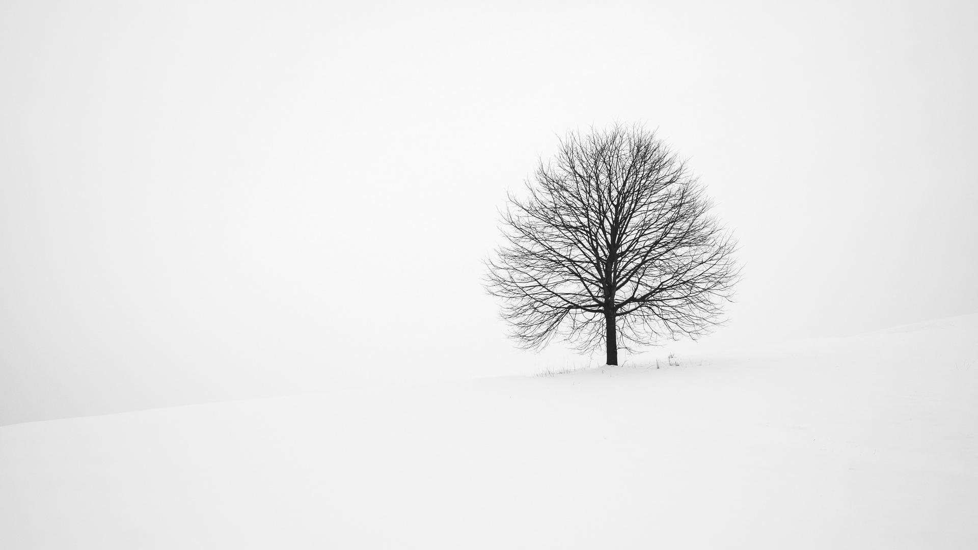 30++ Minimalist Aesthetic Winter Desktop Wallpaper - Basty ...