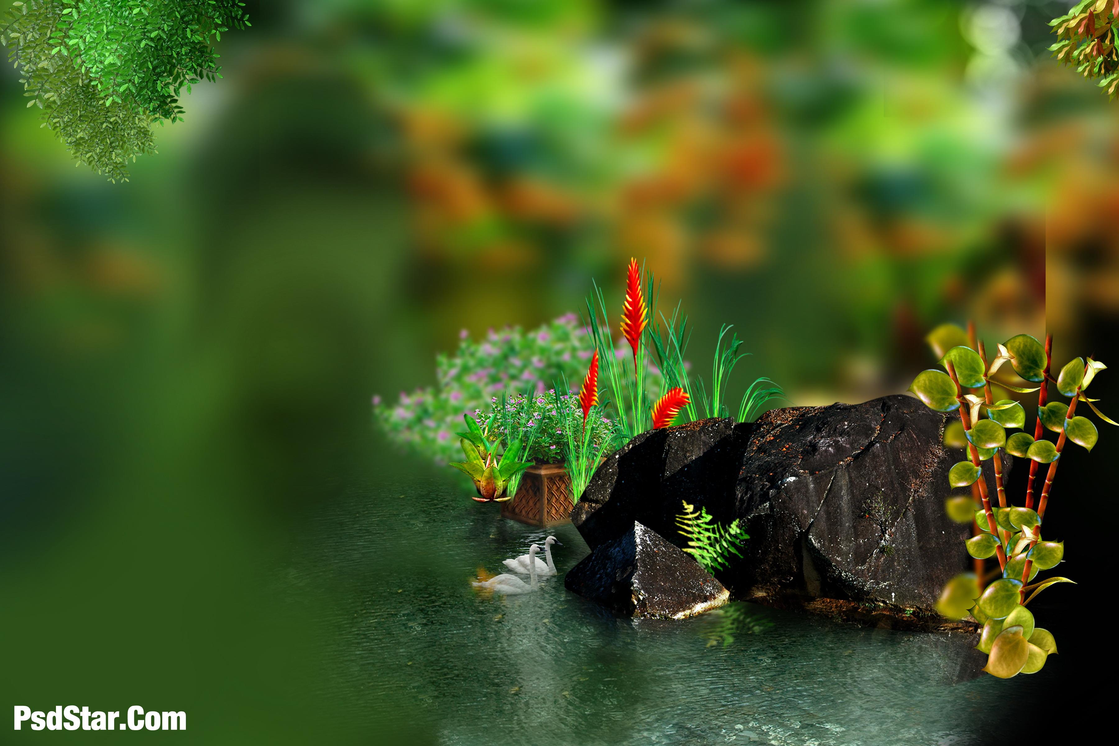 Studio Photography Hd 1080p Wallpapers Wallpaper Cave