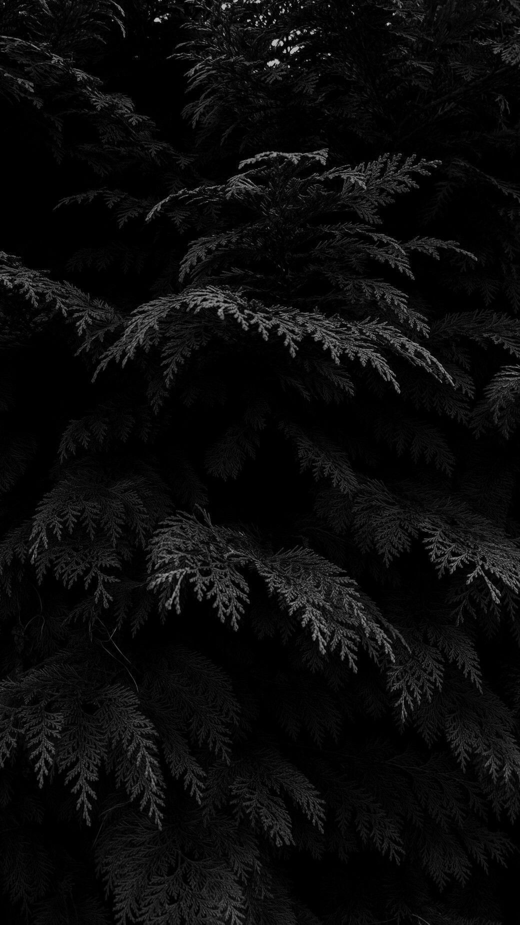 Aesthetic Phone Black Wallpapers - Wallpaper Cave