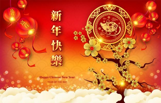 Happy chinese new year 2020 year banner Vector