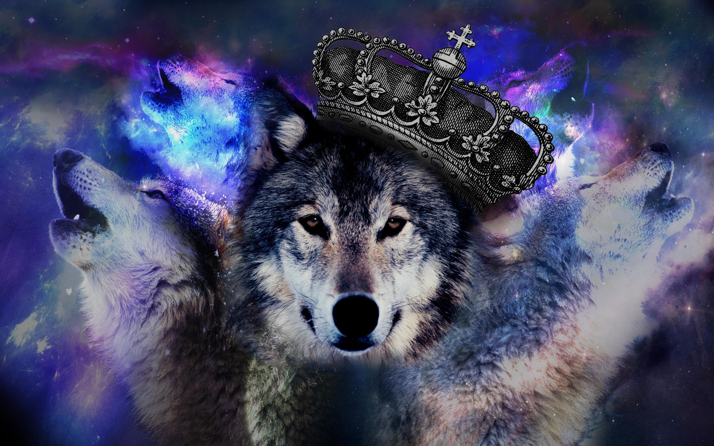 Desktop Hd Wolf Galaxy Wallpapers Wallpaper Cave