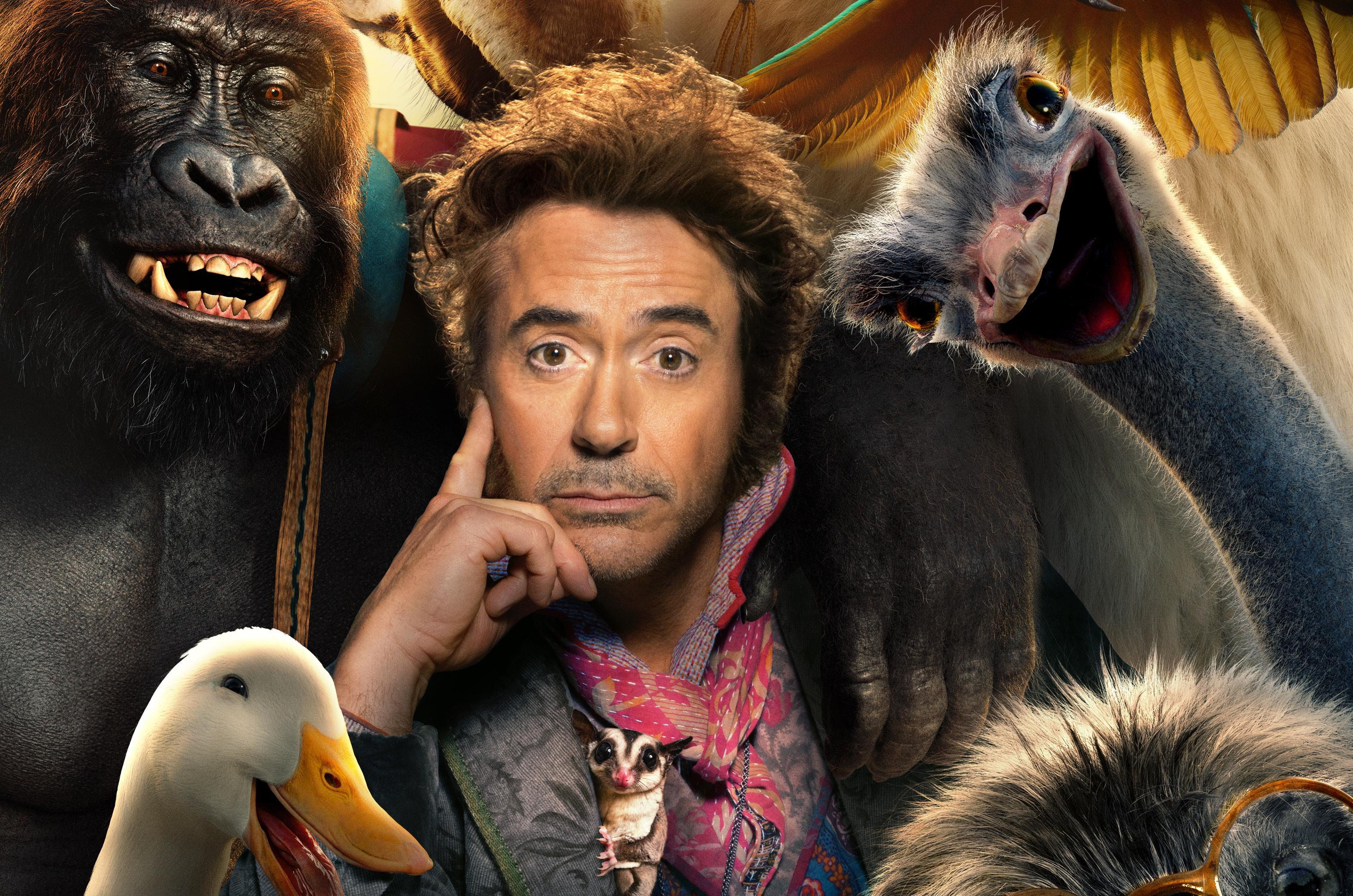 Dolittle 2020 Movie, HD Movies, 4k Wallpapers, Image