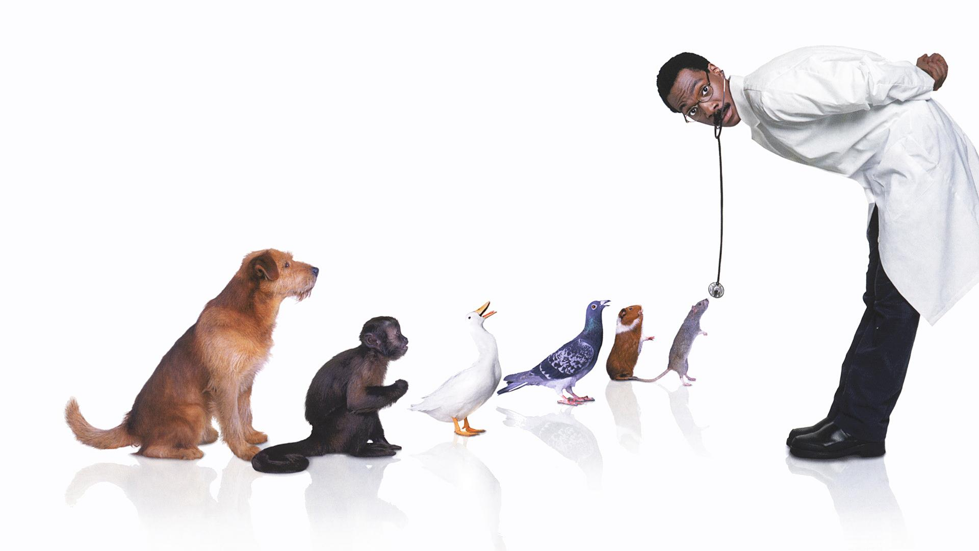 Dr. Dolittle HD Wallpapers