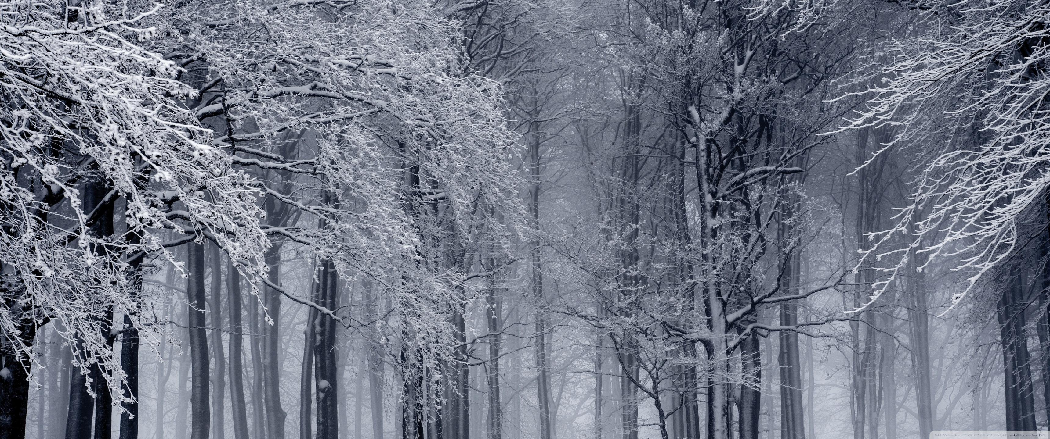 Winter 4k Ultrawide Wallpapers