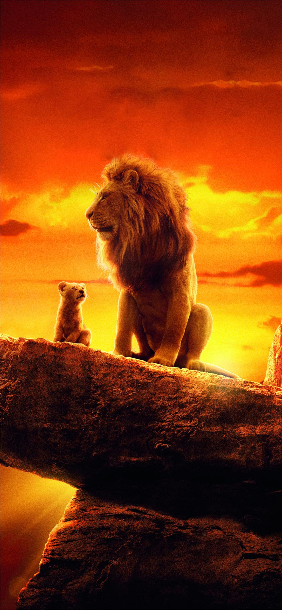 the lion king 2019 4k movie iPhone 11 Wallpapers Free Download