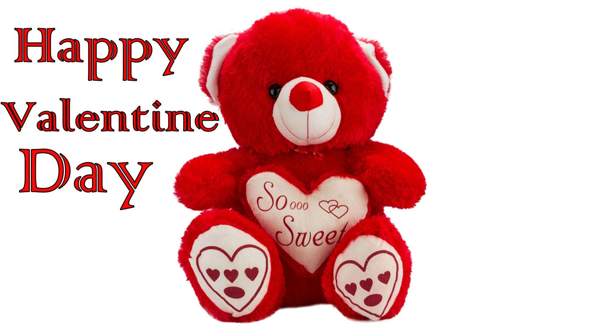 14th February Valentines Day Wishing Cards Image Pictures