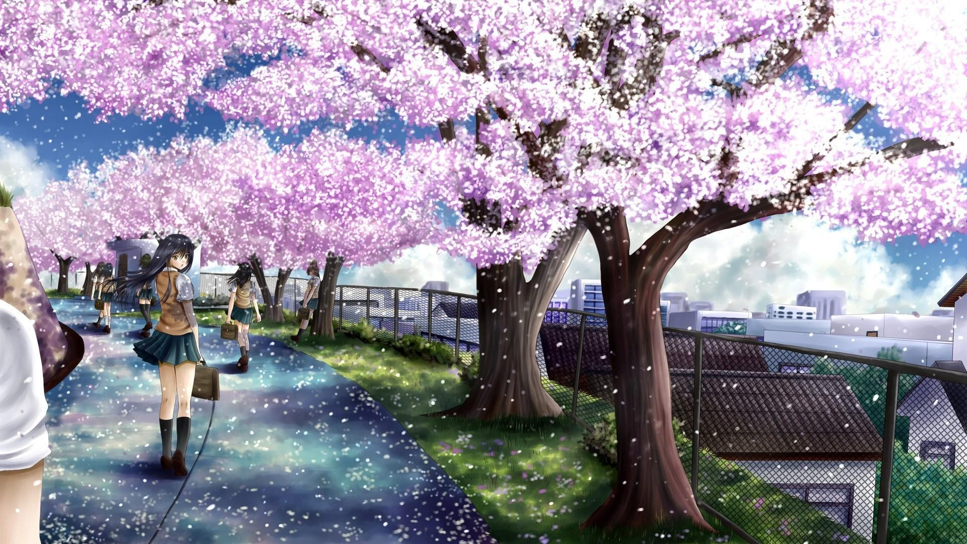 Anime Sakura Trees Hd Wallpapers Wallpaper Cave