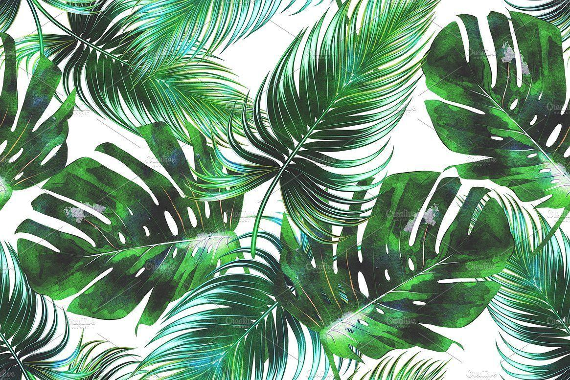 Green Leaf Aesthetic Wallpapers - Wallpaper Cave