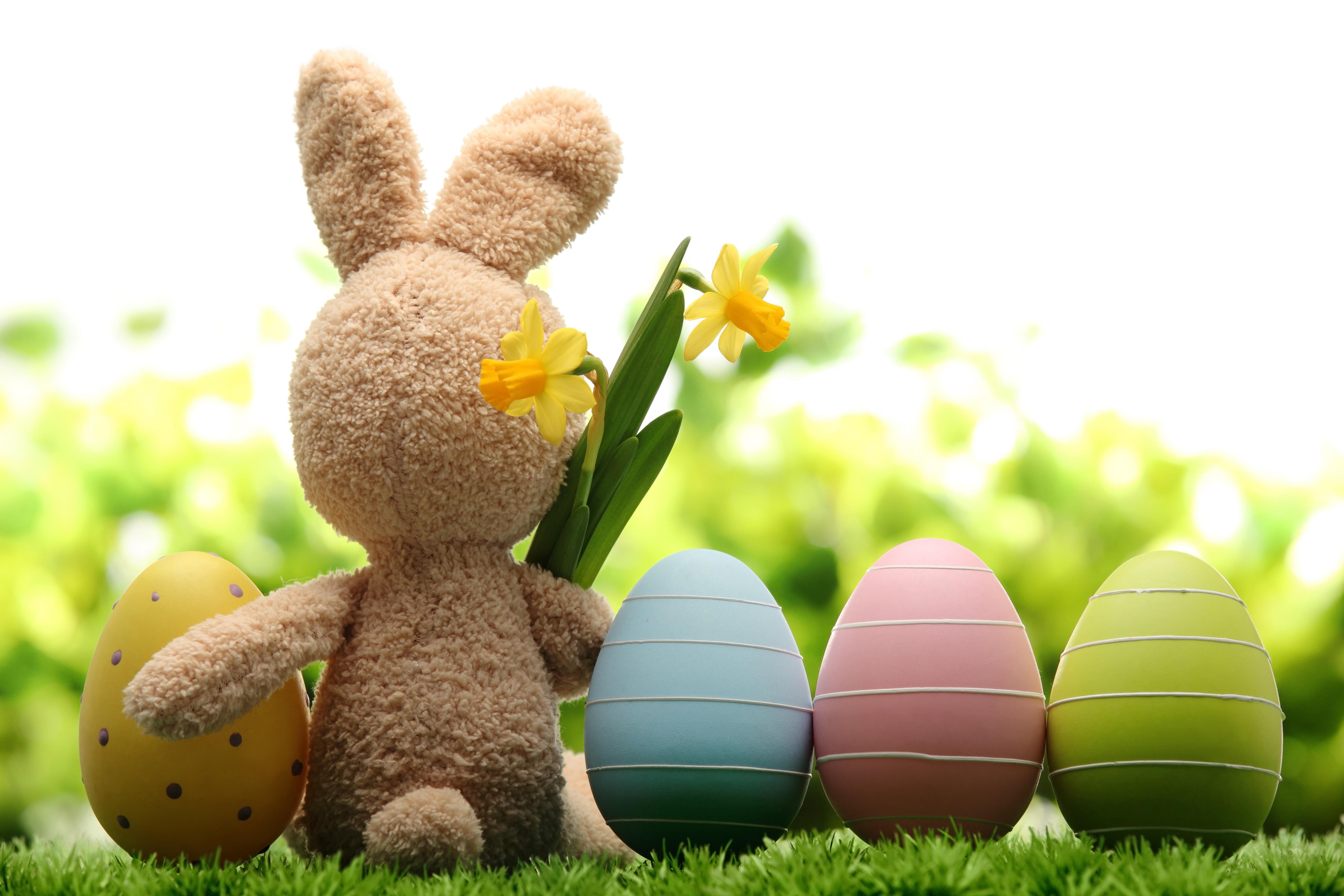 Cute Easter Bunnies Wallpapers Wallpaper Cave