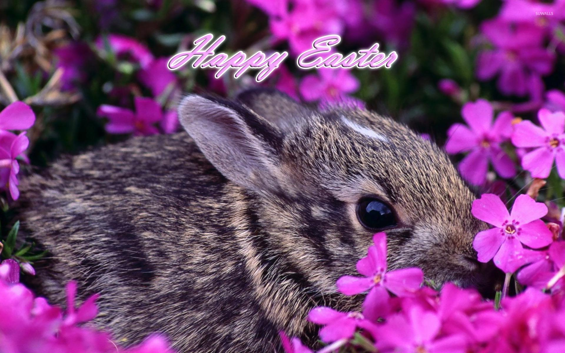 Easter 1920x1200 Wallpapers Wallpaper Cave