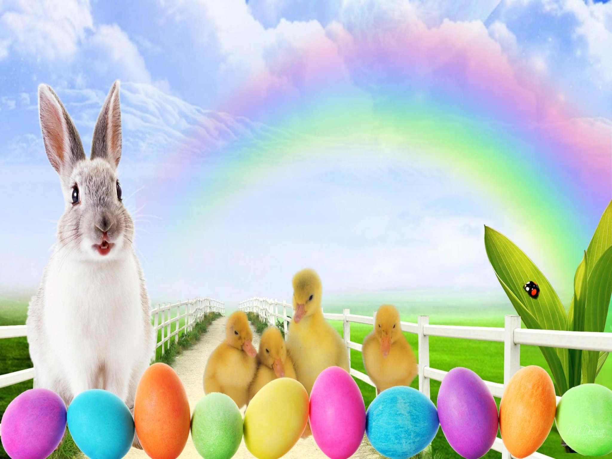 Easter Bunny And Egg Wallpapers Wallpaper Cave