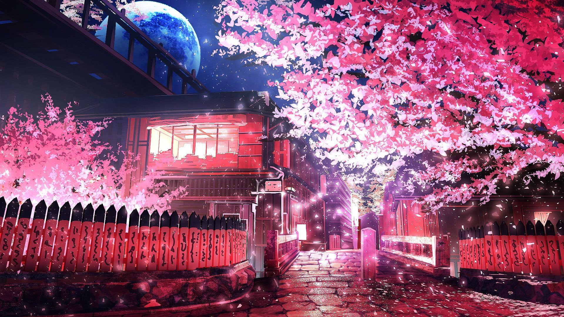 Anime Sakura Trees Hd Wallpapers Wallpaper Cave