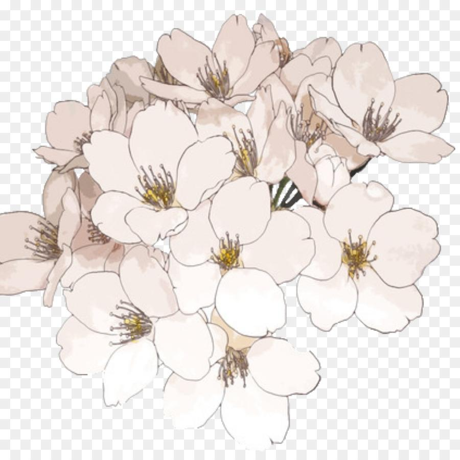 Flower Drawing Wallpapers Wallpaper Cave