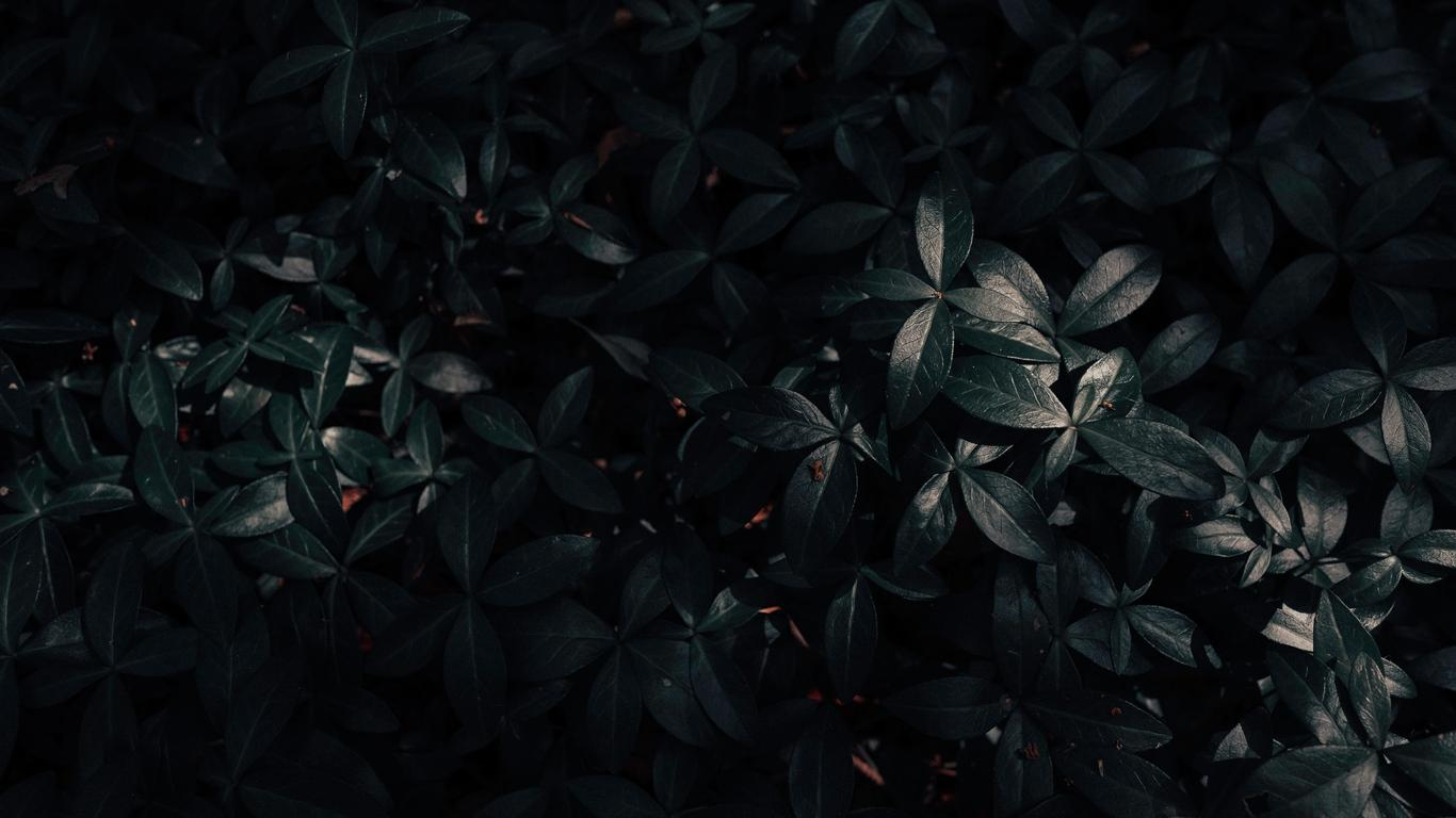 Dark Laptop Wallpapers Wallpaper Cave