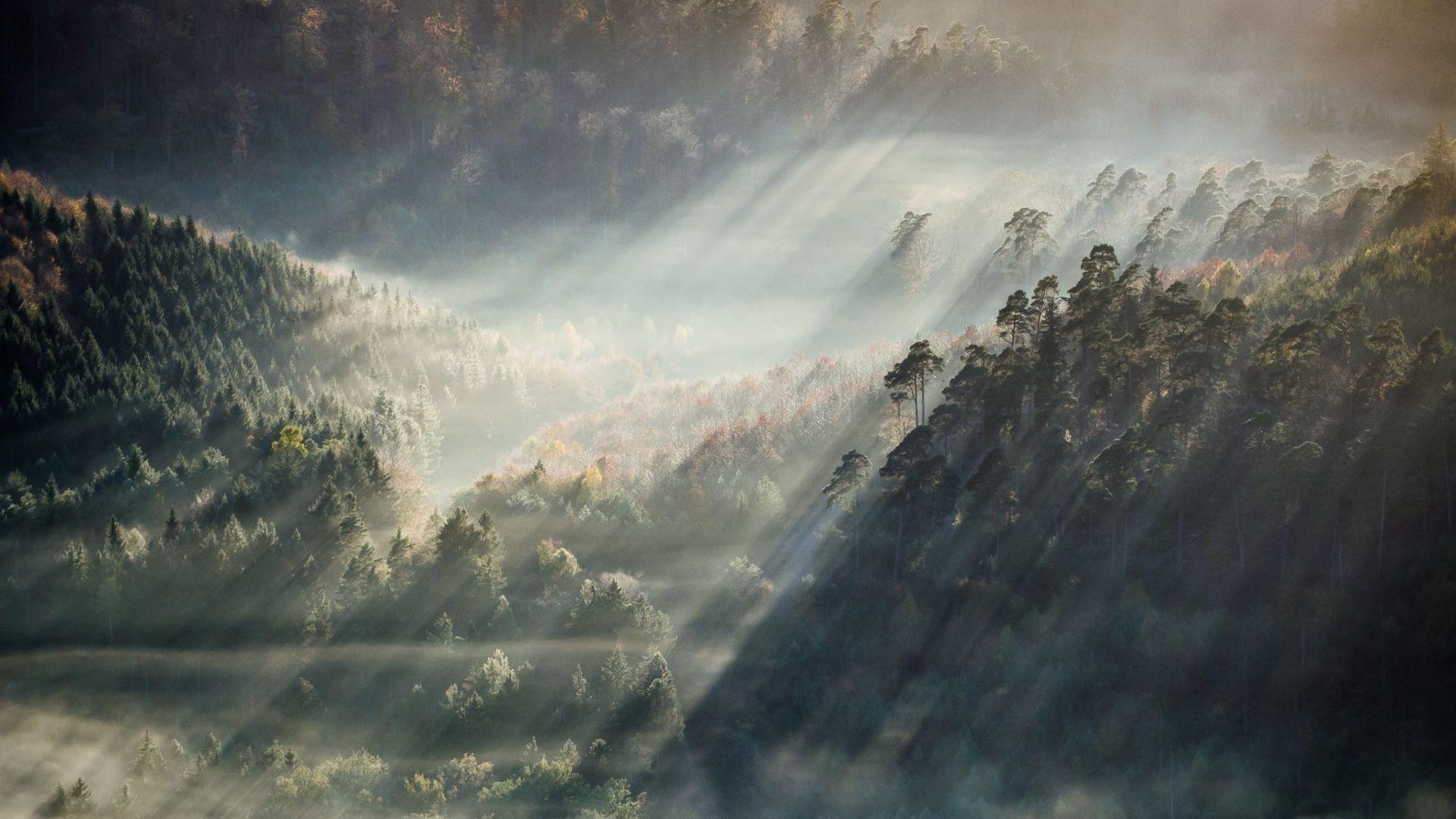 Aesthetic Nature Full HD Wallpapers ...