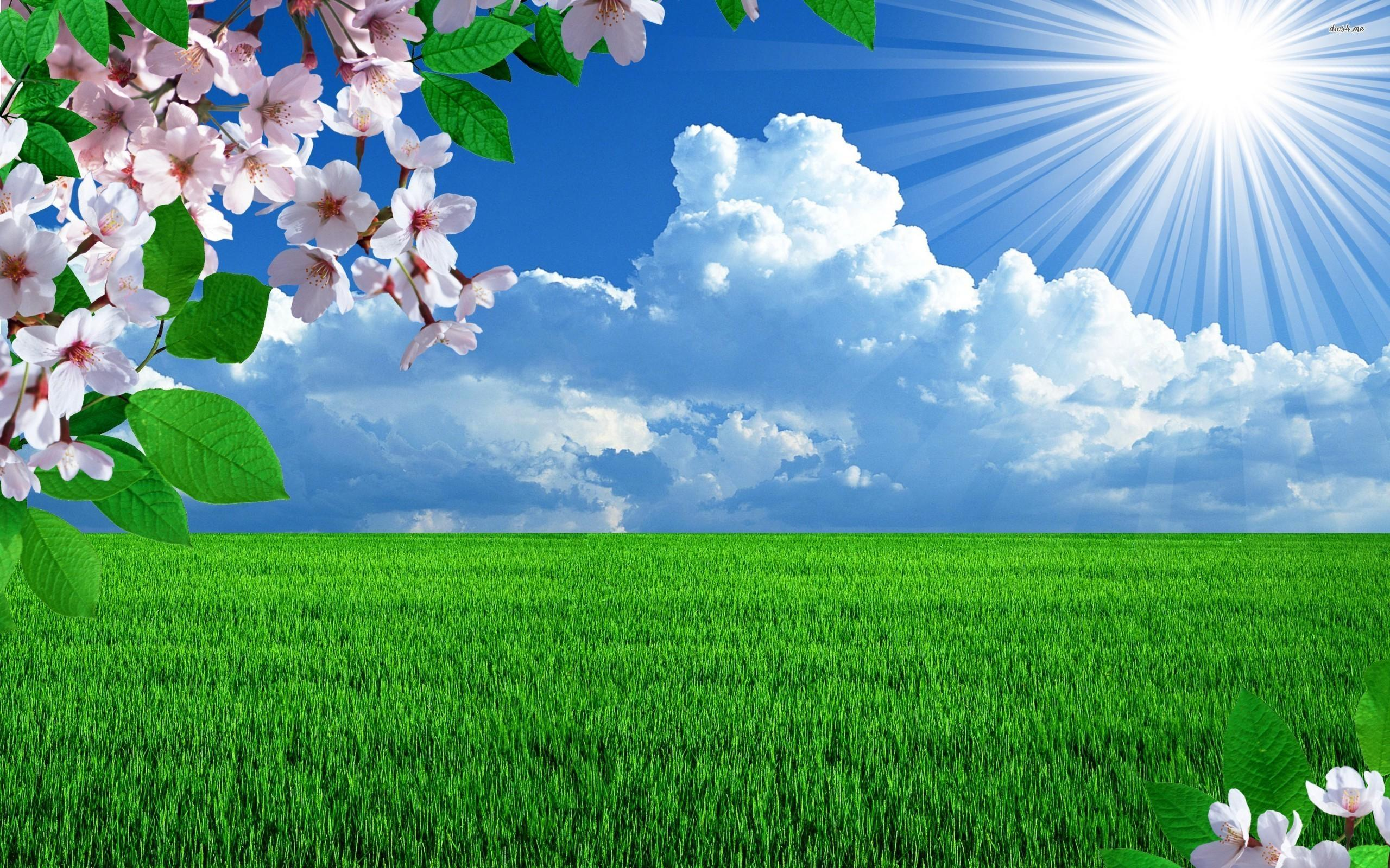 Download Sunny Spring Day Wallpaper, HD Backgrounds Download