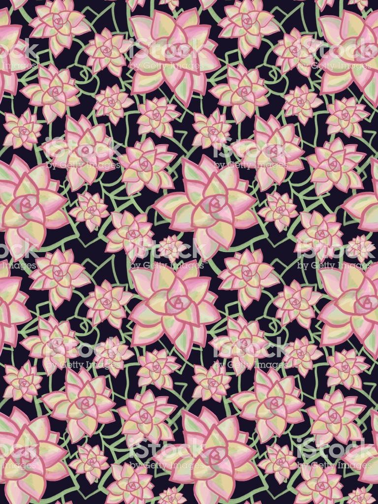 Pink Succulent Phone Wallpapers Wallpaper Cave