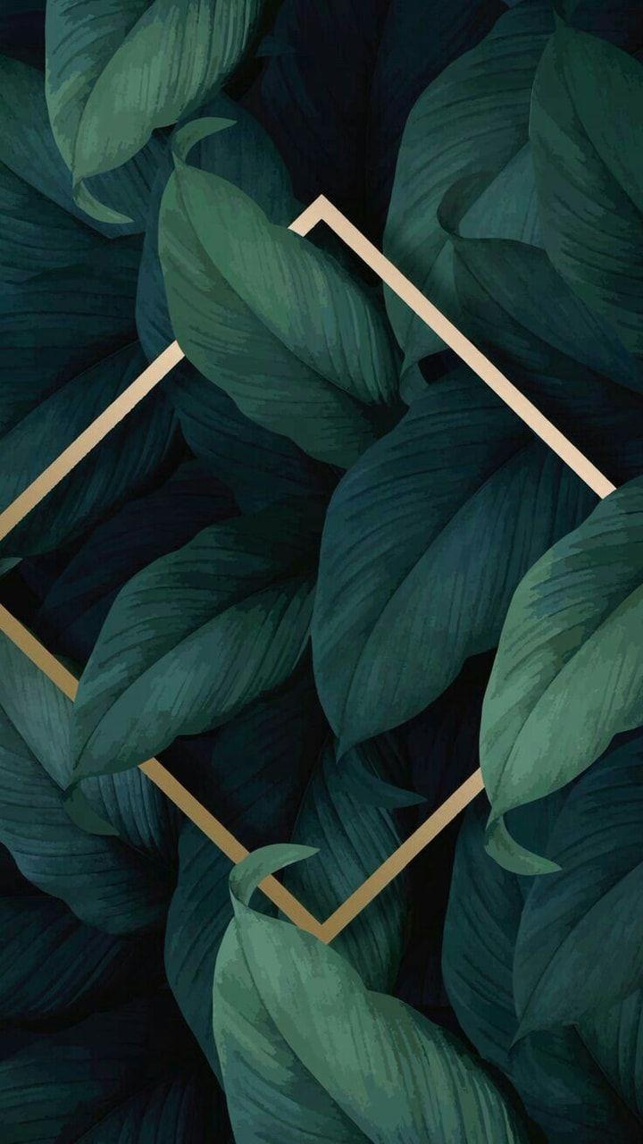 Love Plants Wallpapers Wallpaper Cave