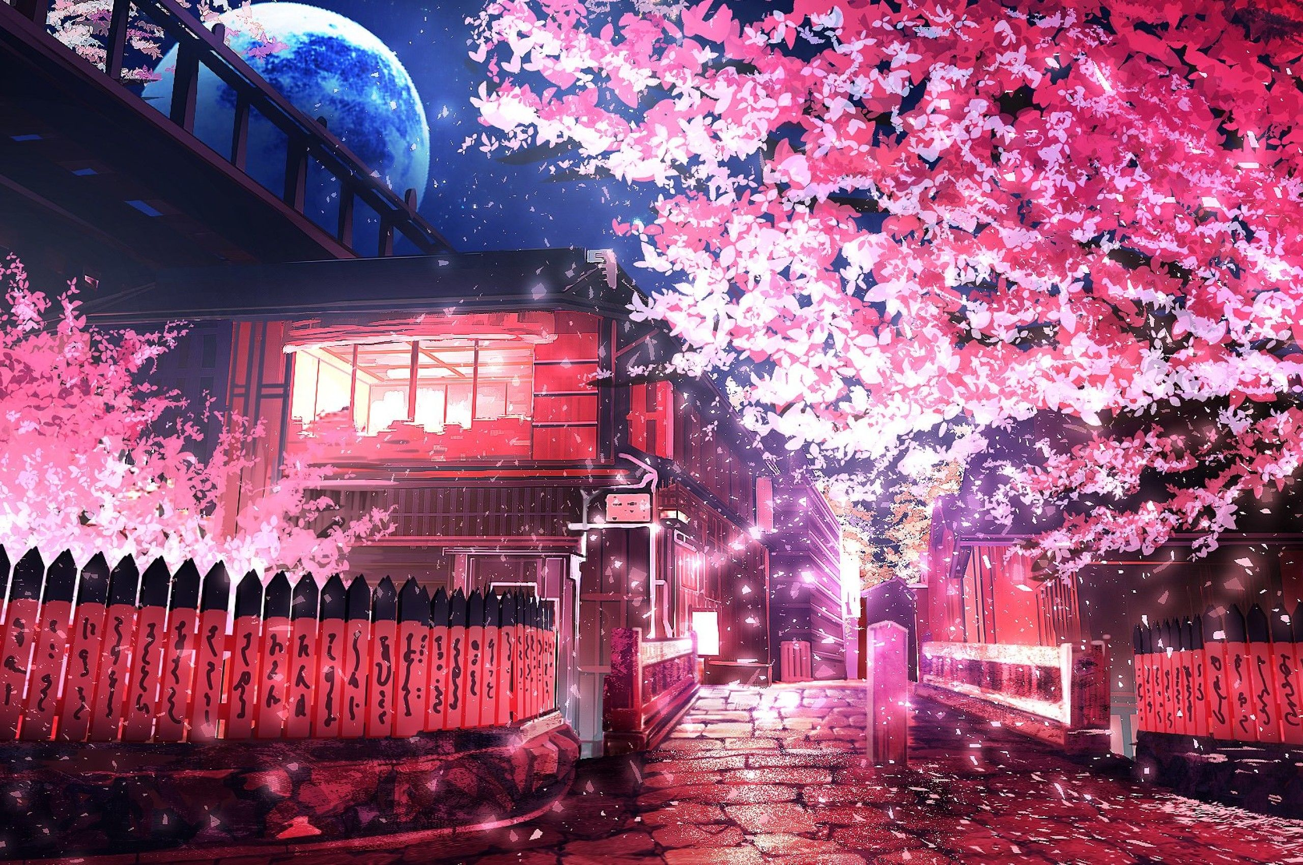 Cherry Blossom Anime Wallpapers - Wallpaper Cave