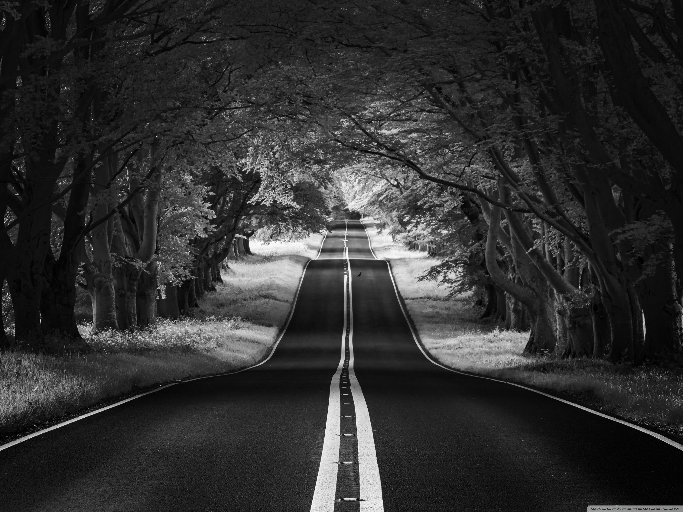 Aesthetic Black And White Hd Wallpapers Wallpaper Cave