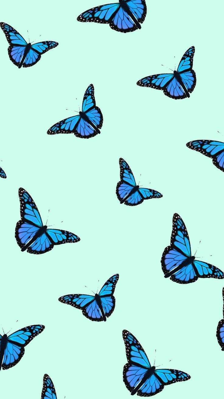 Butterfly Tumblr Wallpapers Wallpaper Cave
