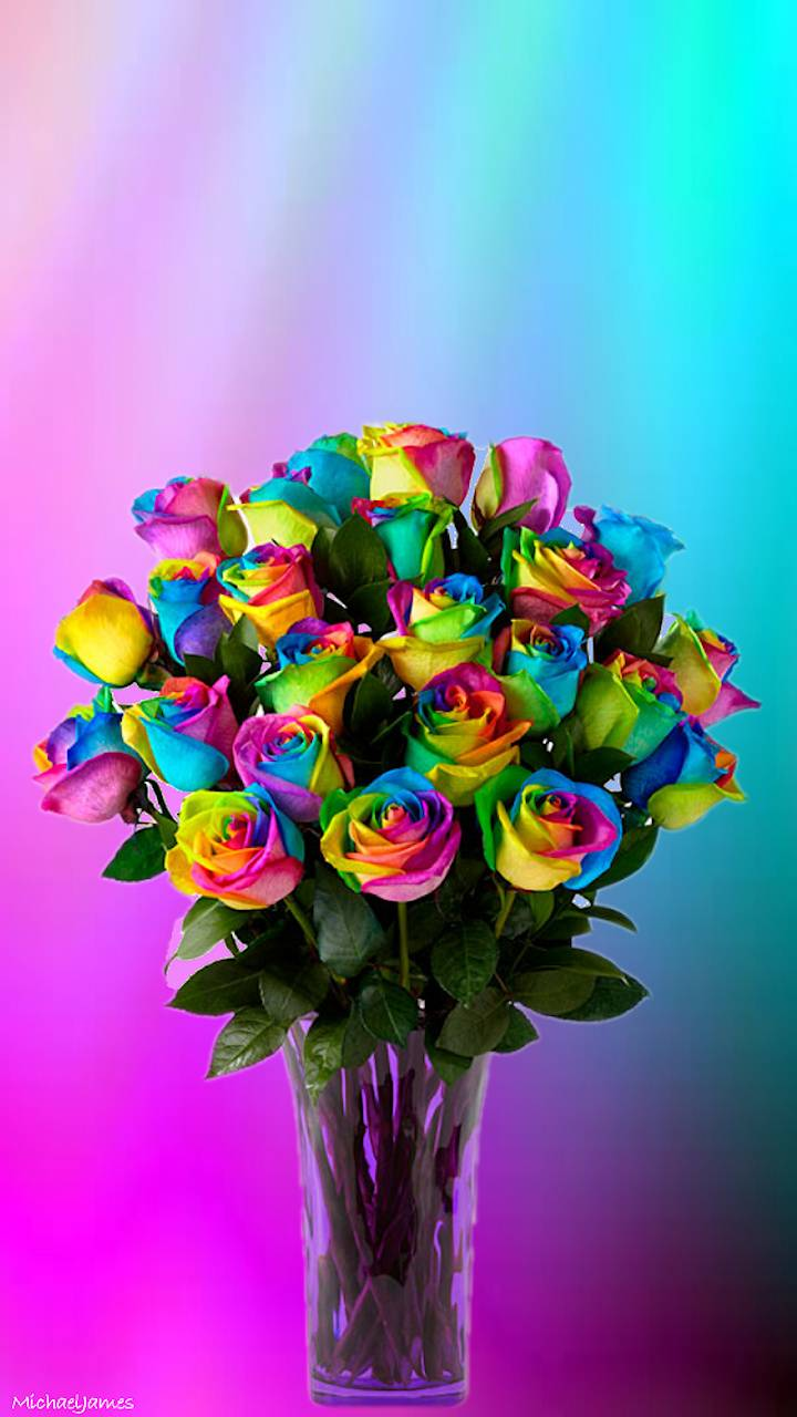 Rainbow Roses Wallpapers Wallpaper Cave