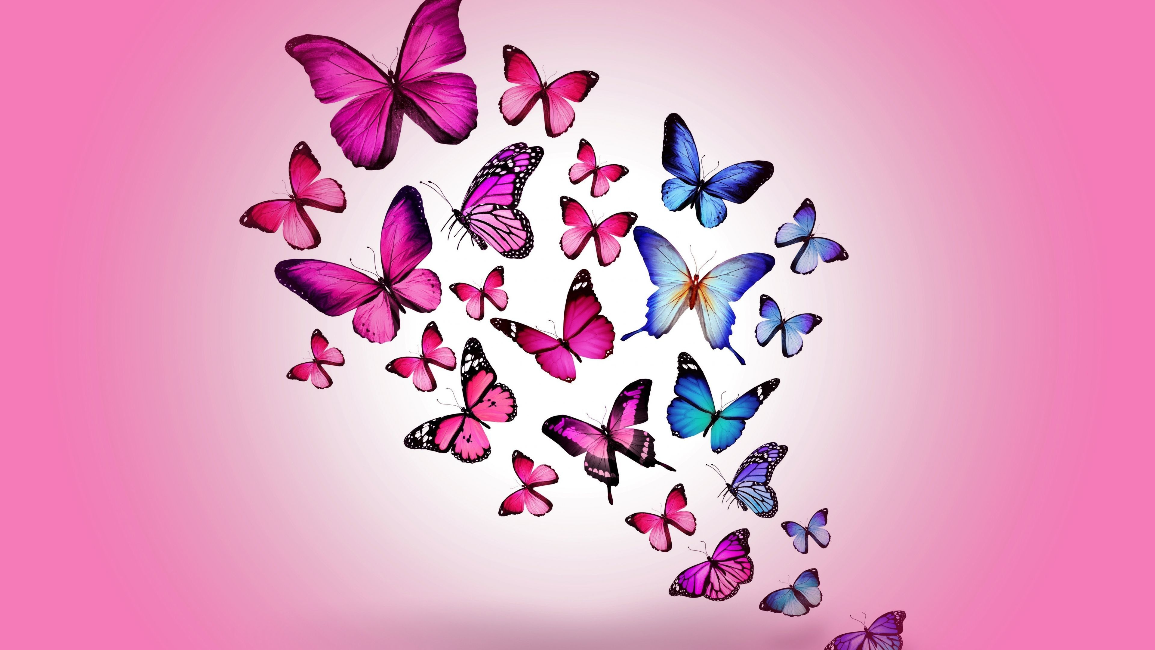 Aesthetic Butterflies Wallpapers Wallpaper Cave