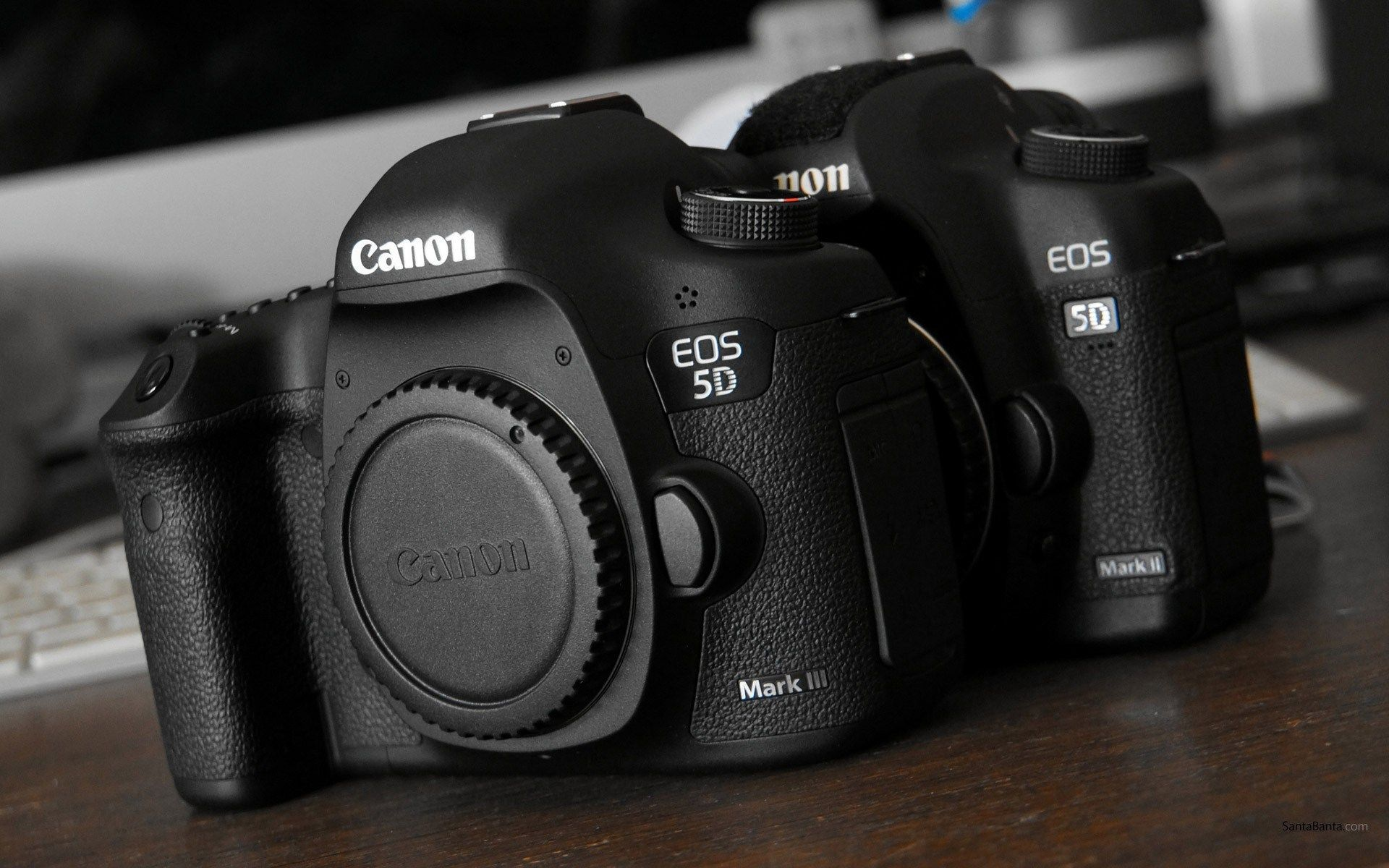 Canon EOS 5D Wallpapers - Wallpaper Cave