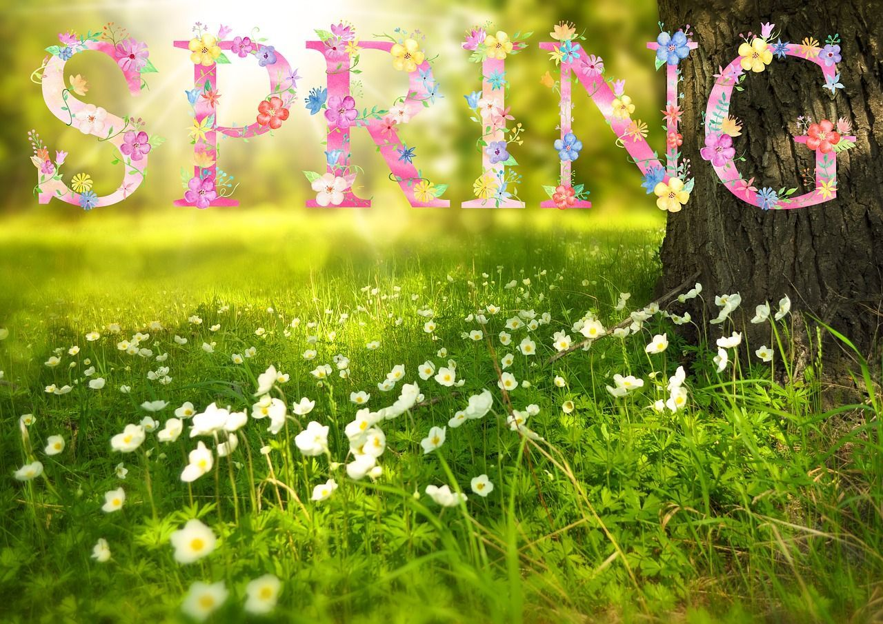 First Day of Spring 2020: The Spring Equinox