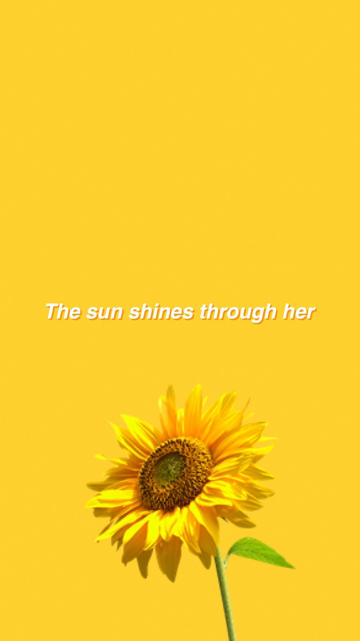 Sunflower Yellow Tumblr Aesthetic Wallpapers